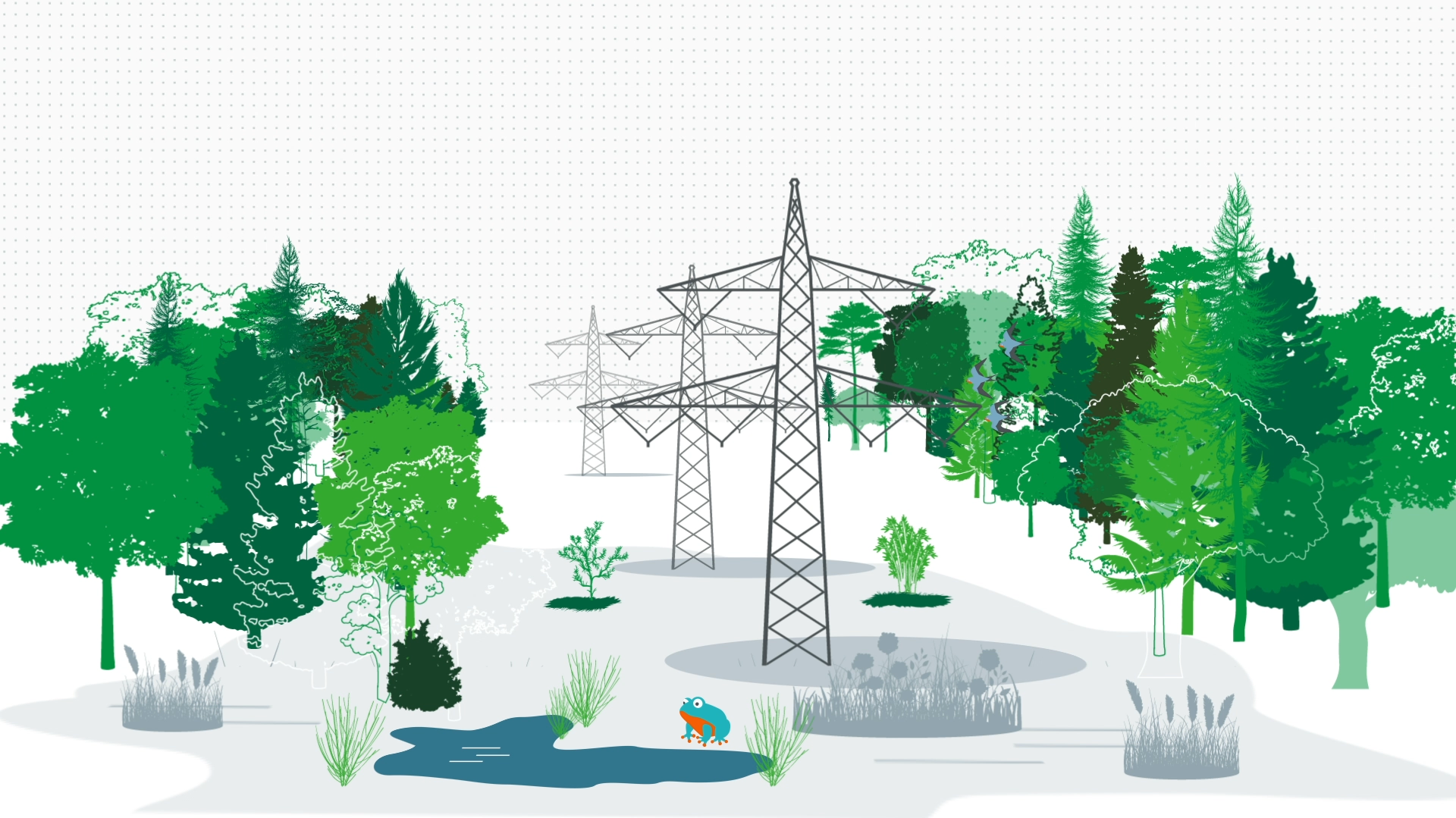 Was ist ökologisches Trassenmanagement?